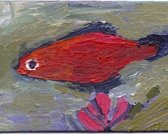 Orange Fish Original Acrylic Painting On Canvas Board by Rina Miriam Drescher