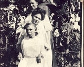Four WOMEN in a SUNFLOWER GARDEN Photo Postcard Circa 1907