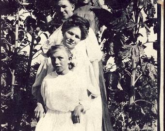 Four WOMEN in a SUNFLOWER GARDEN Photo Postcard Circa 1907