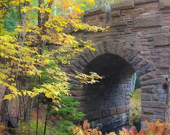 MAINE Photography ~ MOUNT DESERT Island Maine New England Travel Fall Foliage Autumn Seasonal Landscape Nature Photo Print Art