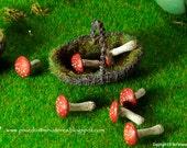 Russula Toadstool  - WIZARD / FAIRYTALE RANGE