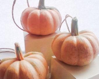 Pumpkin Soap on a Rope - Pumpkin Spice oil - Halloween Soap - Orange - Autumn Fall Halloween Thanksgiving Gifts -