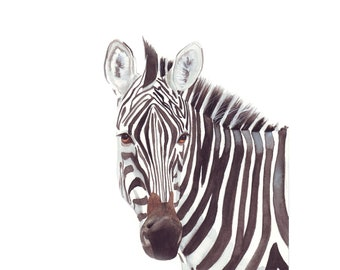 Zebra watercolor Painting - african animal Print of watercolor painting - A4 print