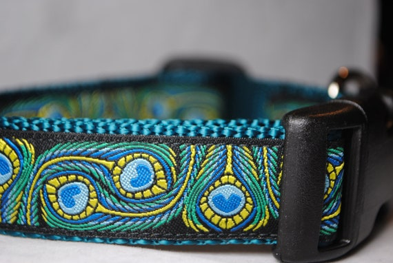 """Peacock Feathers - 1"""" Wide Adjustable Dog Collar"""