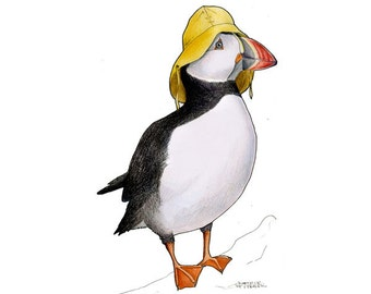 Puffin in a Sou'wester  - A4 archival quality print