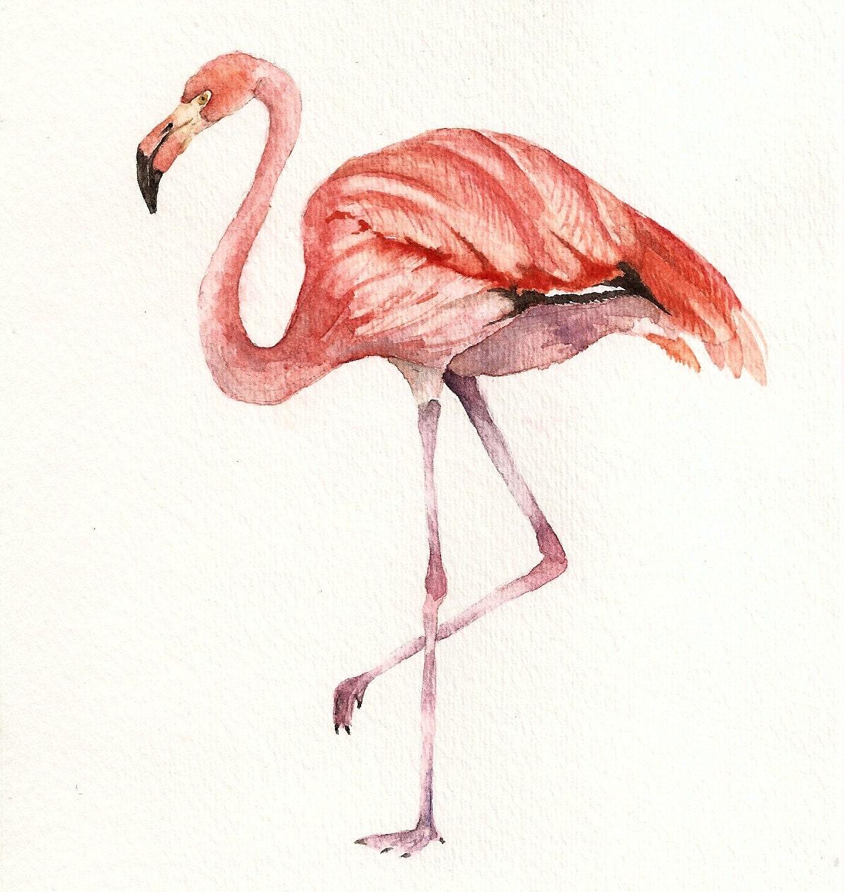 PInk Flamingo Original Watercolor Painting