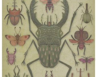 Entomologist's Wish - Art print