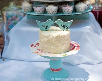 mr and mrs Love Bird cake topper, custom, love birds, party favor, shower favors, wedding, home decor, spring decor