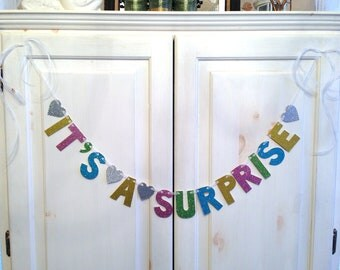 It's a Surprise Banner -- Baby Shower Decoration / Gender Reveal Party / Photo Prop