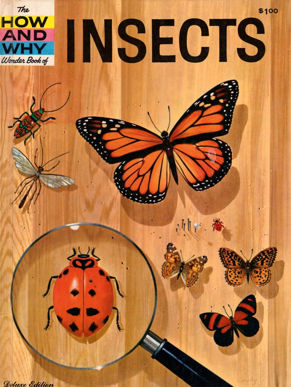 The How and Why Wonder Book of Insects