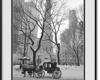 Chicago Water Tower on Michigan Avenue - Horse & Carriage  - Black and White Picture, Photo, Image