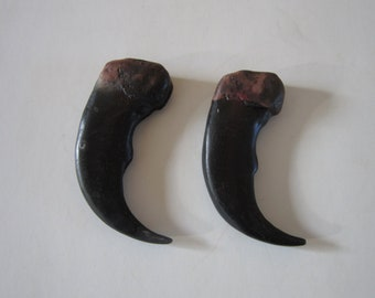 "2 Resin Grizzly Bear Claws 3 1/2""  Jewelry and Craft  Projects CL4"