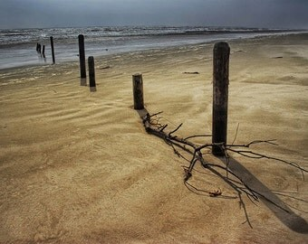 Shore Pilings on a Sandy Beach on Padre Island National Seashore in Texas by the Gulf of Mexico No.2005 A Fine Art Seascape Photograph