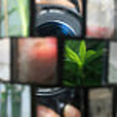 shyphotog