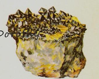 Crocoite Wolframite Wulfenite Scheelite Crystal Stone Mineral Vintage Lithograph Edwardian Geology Print To Frame 22