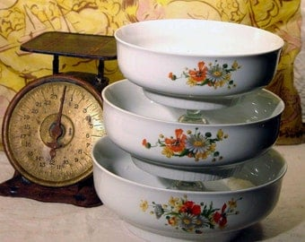 Henneberg Porzellan Dresden Germany Floral Salad Vegetable Bowl Set Gorgeous Porcelain Vintage Serving Kitchen Ware