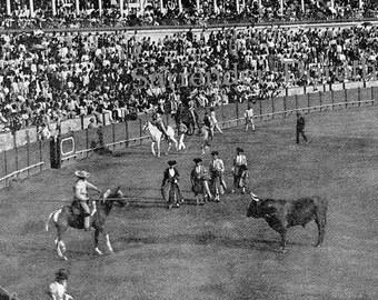 Bull Fight Seville Spain 1890 Large Photo Print Original Victorian Rotogravure Illustration To Frame
