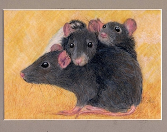 Pet Rat Art, Custom Portrait of Rats or any small pet, ferret, guinea pig, turtle, snake, bird, chicken