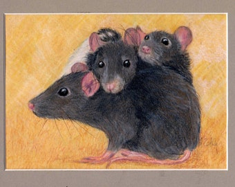 "Pet Rat Art, Custom Portrait of Rats or any small pet, ferret, guinea pig, turtle, snake, bird, chicken, 3.5"" x 5"""