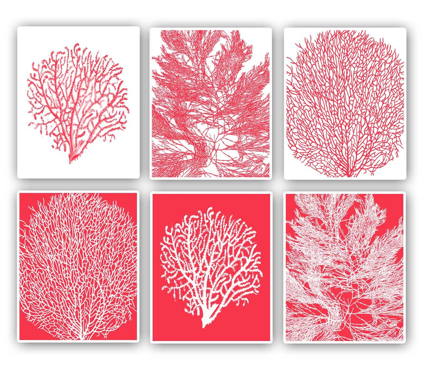 Sea Fan Prints 8x10 Prints Set Of 6 Pink Red Background. Staphylococcal Pneumonia Signs. Zoonosis Signs. Pisci Signs Of Stroke. Fun Road Signs Of Stroke. Roll Tide Signs Of Stroke. Library Collection Signs. Prayer Signs Of Stroke. Foot Fungus Bottom Signs Of Stroke
