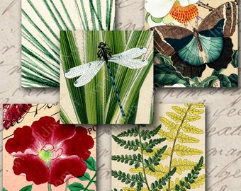 Instant Download Digital Images 1 inch squares for glass tiles resin pendants 25mm bezel photo tray, Dragonfly Fern Butterfly Flower (843)