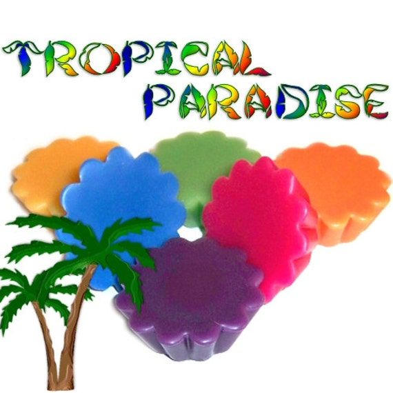 6 Tropical Paradise Variety Tarts Candle Melts Fruit and Floral Scents