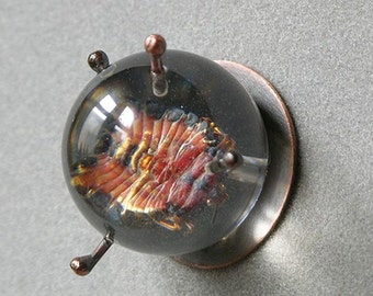 On Sale Marked down Rollie Pollie Orb Brooch Made With Real Insect In Resin