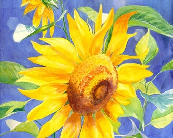 Sunflower giclee art print