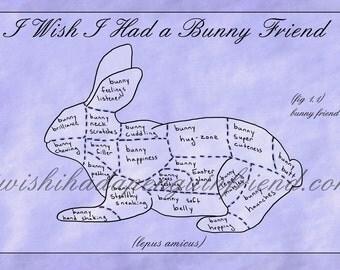 I wish i had a bunny friend small print
