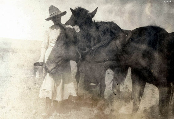 vintage photo Cowgirl Feeds her Beautiful horses