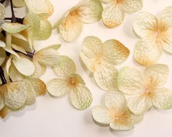 36 Silk Hydrangea Petals in Vintage Cream ... silk flower, artificial flower, millinery craft- ITEM 0776