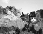 Mens Funny Graphic Tee, Meowmore T Shirt, Awesome Cat t-shirt, Meowmore, Mt. Rushmore, Mountain, tshirt, 100% Cotton, Gift for him, S-2XL