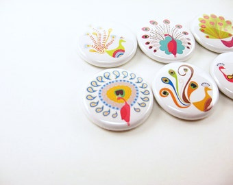 6 Peacock Fridge Magnets, cute magnets, bird magnets, colorful magnets, your choice of background colors - brown or white 1113