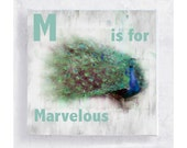 ABC Art - Kids Wall Art - Nursery Art - Alphabet Art - 5x5 Art Block - M is for Marvelous - Animal Portrait - Wall Art - Home Decor