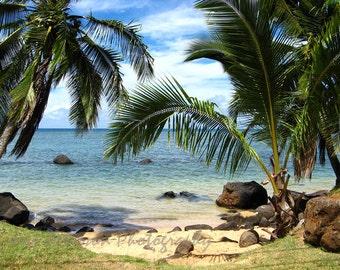 Kauai Beach Photography- Palm Tree photos Sandy Beach Print Green Blue Aqua Home Decor Tropical Wall Art 11x14, matted 8x10, Travel Photo