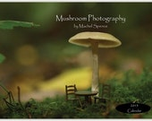 Reserved for Jocelyn Mushroom Calendar...Woodland Calendar Fungi Prints