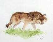 Original Watercolor Painting Coyote Art Kids Women Men Wall Decor Woodlands Brown Neutral Colors Nature White Dorm Nursery 9.5 x 11 Under 60 - LaBerge