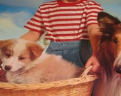 Vintage 1965 Calendar Sample, Young Girl with her Dogs, Collie, Baby Puppy in Basket, Mid Century