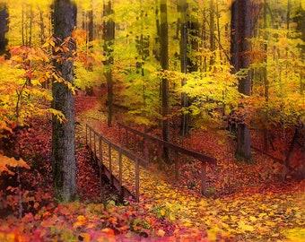 Autumn footbridge, Art, photography, nature, Michigan,11x14, Fine Art photograph, original, autumn decor, gift under 60,nature lovers gift