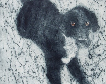 Original Hand Pulled Collograph, Collagraph Print of a Big Black Labrador X Dalmatian Dog
