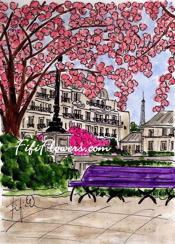 Pink Flowering Tree in Paris