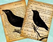 BIRDS on OLD BOOKS Digital Collage Sheet 2.5x3.5in Printable Download - no. 0022