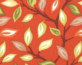 Cotton Quilting fabric | Kate Spain Serenade Foliage Sierra 27111 11