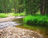 Forest River Photo -Rocky Mountain National Park -Colorado Gifts -Enchanted Forest -Emerald Green Wall Art -Colorado Fine Art Photography