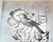 Black Bird Greeting Card With Envelope   -   Blank  Card  Seasonal Greeting Card