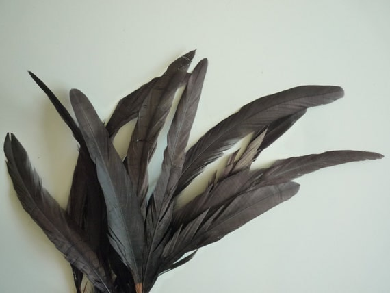 COQUE TAIL FEATHERS Loose / Dark Chocolate Brown   / 200