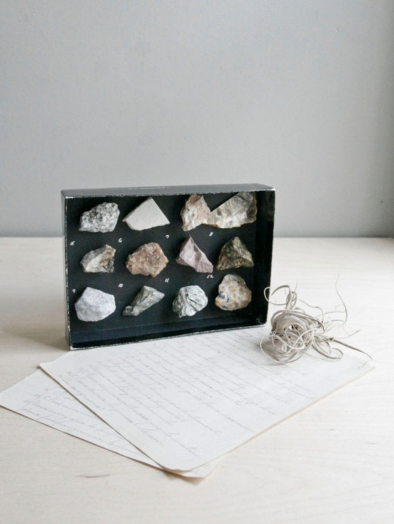 curiosity cabinet / rock & mineral collection