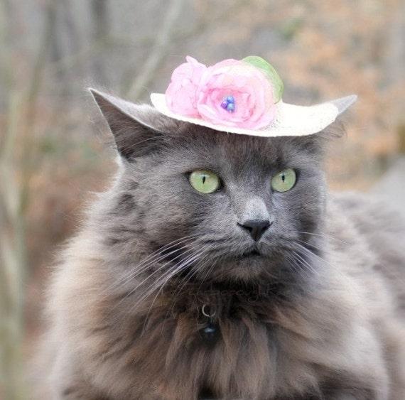 Spring Cat Hat - Cat Hat - Spring Bonnet - Cat Bonnet