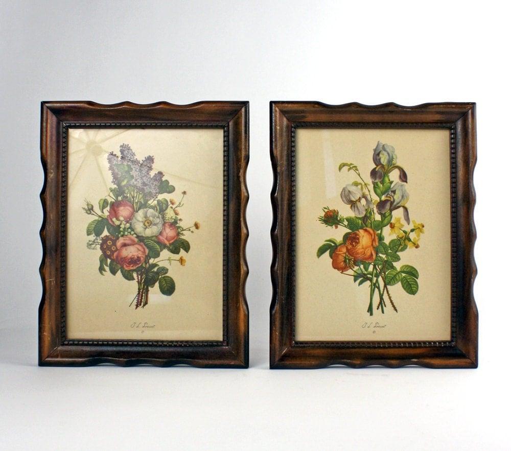 Jean Louis Prevost Vintage French Botanical Prints 503b Amp 504b