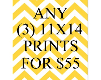 SALE - Any Three 11x14 Inch Prints for 55 Dollars - You Choose The Prints and Colors - Limited Time Only